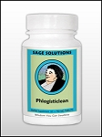 PHLOGISTICLEAN 60 TABLETS