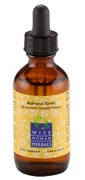 ADRENAL TONIC (FORMERLY GINGKOLA TONIC) 1OZ